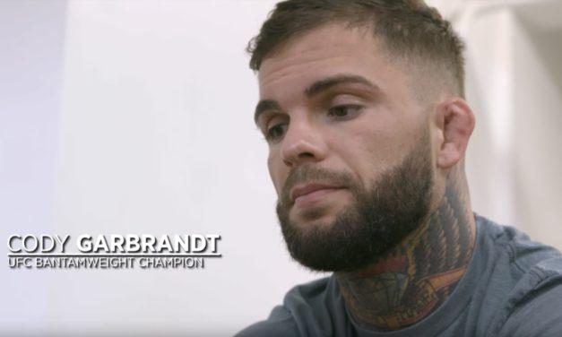 Treći deo Embeddeda za UFC217!