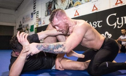 McGregor se vratio treninzima!